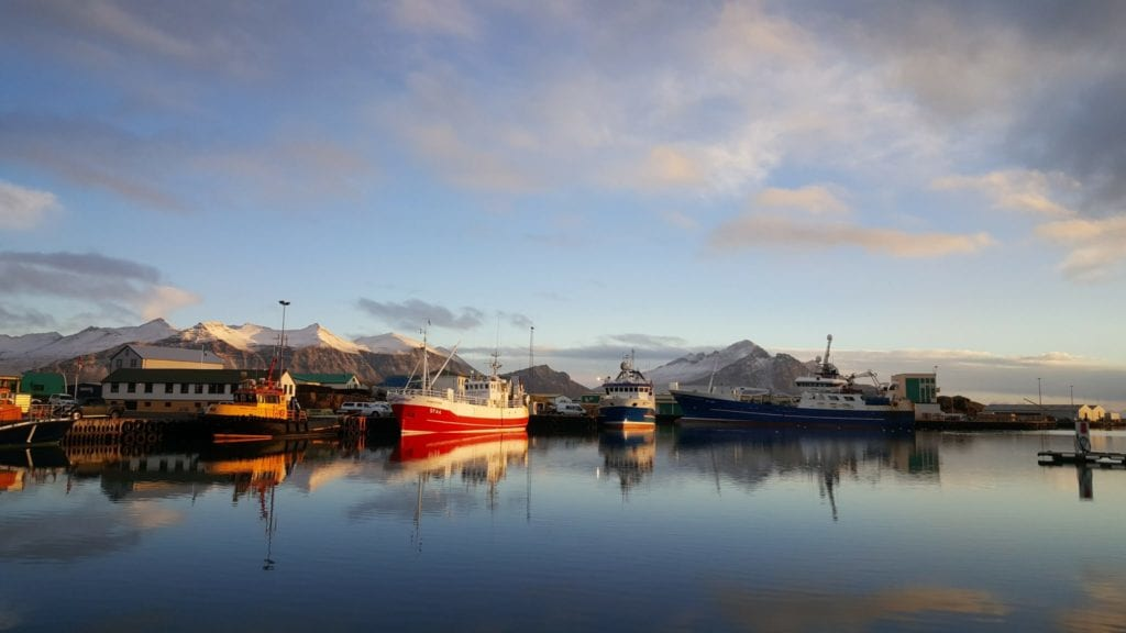 Harbour in South East Iceland